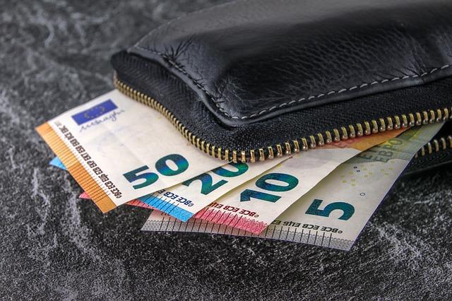 peněženka s penězma