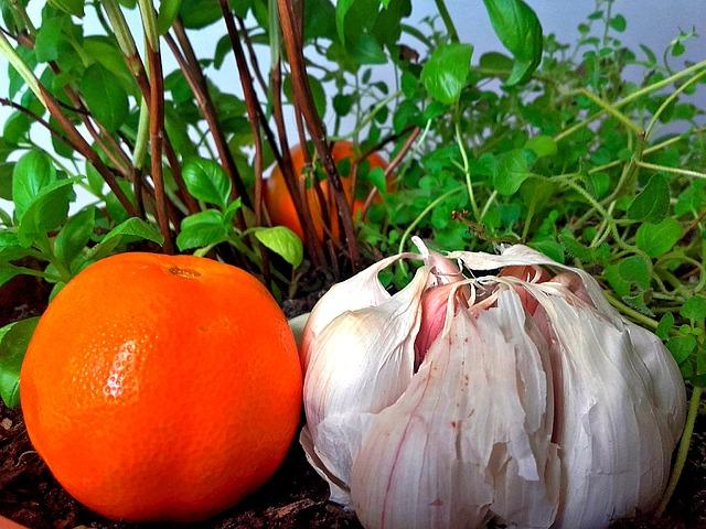 mandarinka a česnek